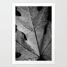 black and white and with drops Art Print