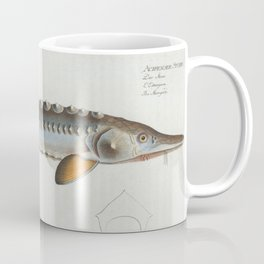 Vintage Illustration of a Sturgeon Fish (1785) Coffee Mug
