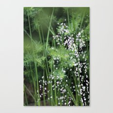 Aqua Jungle Canvas Print