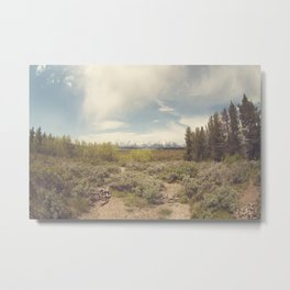 In search of Ansel Metal Print