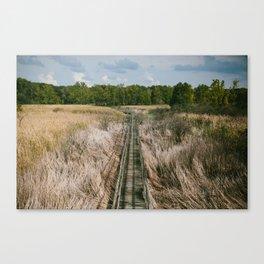 Ohio Swamp II Canvas Print