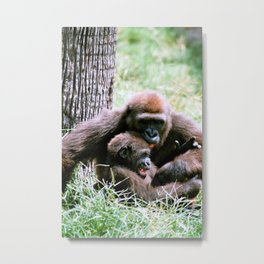 Mother Gorilla tickels her baby gorilla Metal Print