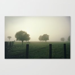 Misty Morning in the Waikato King Country Canvas Print