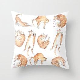 Catastrophic Throw Pillow