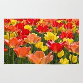 The Tulip Garden Rug