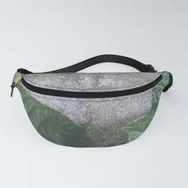 Urban Plant hydrangea leaves on concrete wall Fanny Pack
