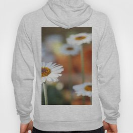 Daisys | marguerite Hoody