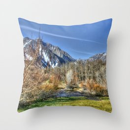 Lazy Afternoon at the Lake Throw Pillow