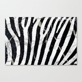marble zebra Canvas Print