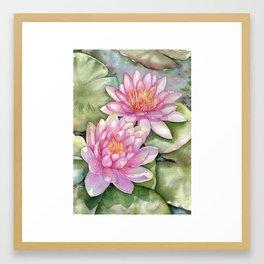 Pink Water Lilies Framed Art Print