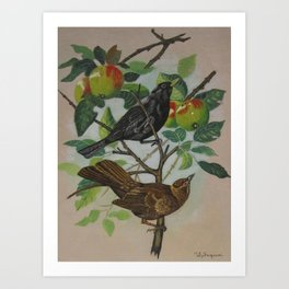 Still Life Pair of Birds Art Print