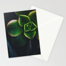 The Succulent Garden 2 Stationery Cards