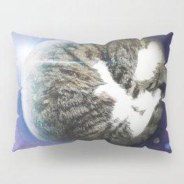 The Sleeping Cat Pillow Sham