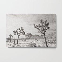 Joshua Tree Park by CREYES Metal Print