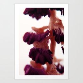 A.L.N. #06 Art Print