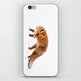 Fire 'n Ice iPhone Skin
