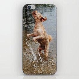 Water Jump iPhone Skin