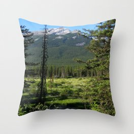 Beautiful Bow Valley Throw Pillow