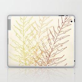 Red Ferns Laptop & iPad Skin