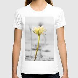 Shining Solo T-shirt