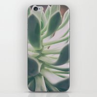 plant iPhone & iPod Skins featuring Plant by pf_photography