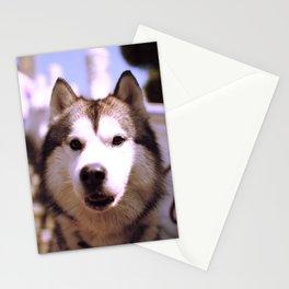 Little memory - Husky Stationery Cards