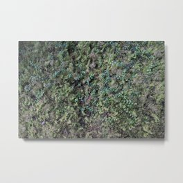 Deep into the Forest (moss, green grass) Metal Print