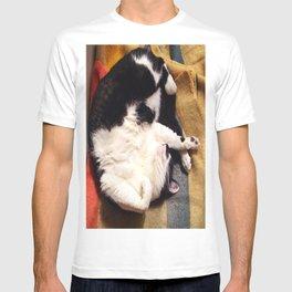 Cat Belly T-shirt