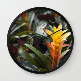 Bromeliad Wall Clock