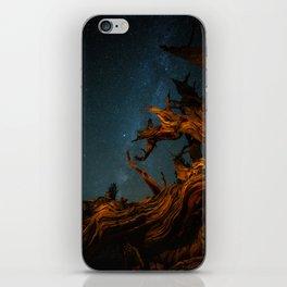 Golden Pine. iPhone Skin