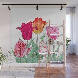 Tulips garden Wall Mural