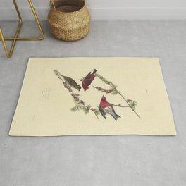 AUDUBON Bird Print Purple Finch Pinus Pendula lithograph color engraving Download Vintage Old Antique Rug