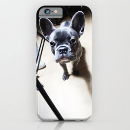 French Bulldog at a photo shoot iPhone Case