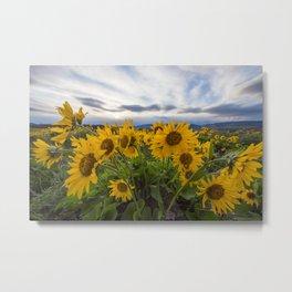 Wildflowers at Rowena Crest Metal Print