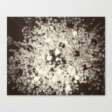 My Exploding Heart Canvas Print