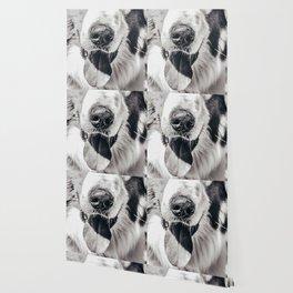 Dog Tongue Wallpaper