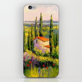 House in Provence iPhone Skin
