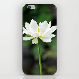 White Lotus iPhone Skin