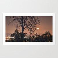 Full Moon in May Art Print