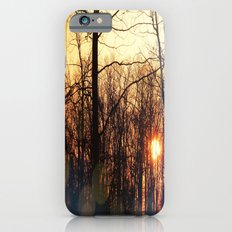 Spring Morning Sunrise Slim Case iPhone 6s