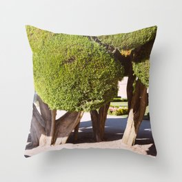 fools wear crowns Throw Pillow