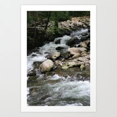 Greenbrier Rapid 2 Art Print