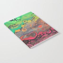 PsyMelt - Watermelon Notebook