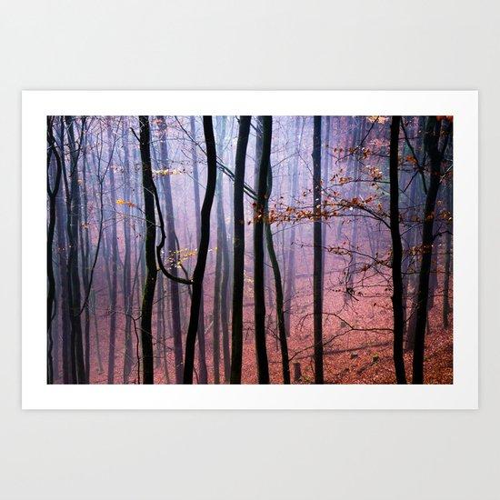 Foggy fall forest photography Art Print