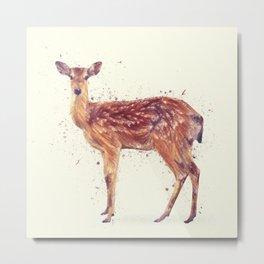 Deer Study Metal Print