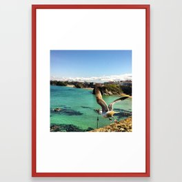Hello Mr. Seagull Framed Art Print