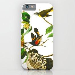 Vintage Scientific Bird & Botanical Illustration iPhone Case