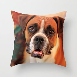 boxer's face weeping of friendly behavior Throw Pillow