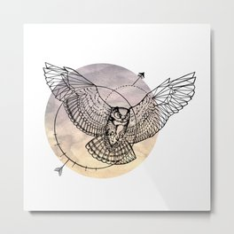 Arrow owl Metal Print