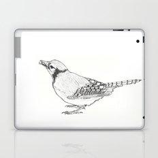 Black and White Blue Jay (02) Laptop & iPad Skin